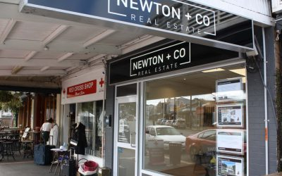 Newton + Co Real Estate